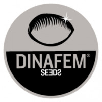 Dinafem Seeds (5)